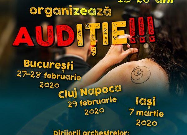 orchestrele-nationale-de-tineret-organizeaza-auditie-pentru-tinerii-muzicieni