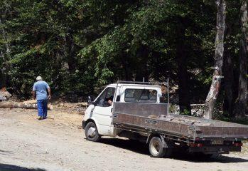 primarul-psd-din-vladesti,-prins-la-volanul-unui-camion-cu-lemne-de-furat