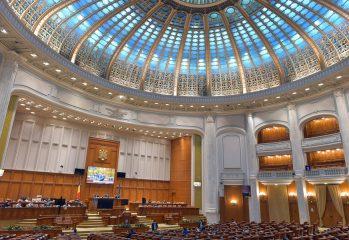 parlamentul-a-revocat-o-pe-renate-weber-din-functia-de-avocat-al-poporului-/-coalitia-intarzie-numirea-unei-noi-conduceri